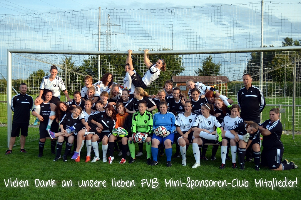 fvb mini sponsoren club klein